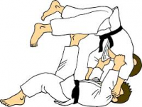 L'ENTENTE DE LA VALLEE-JUDO CLUB MAZUROIS